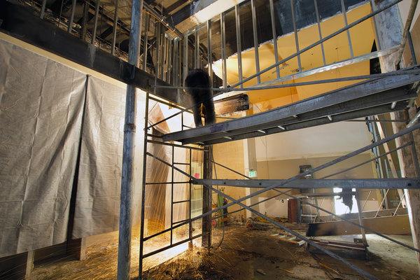 2922011_construction-worker-welding-on-scaffolding